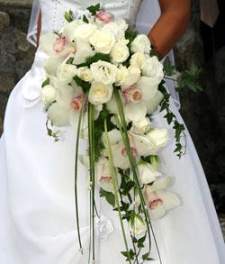 Floristen in berlin oder potsdam gesucht
